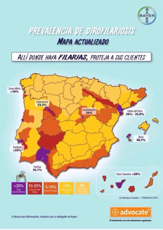 mapa filarias
