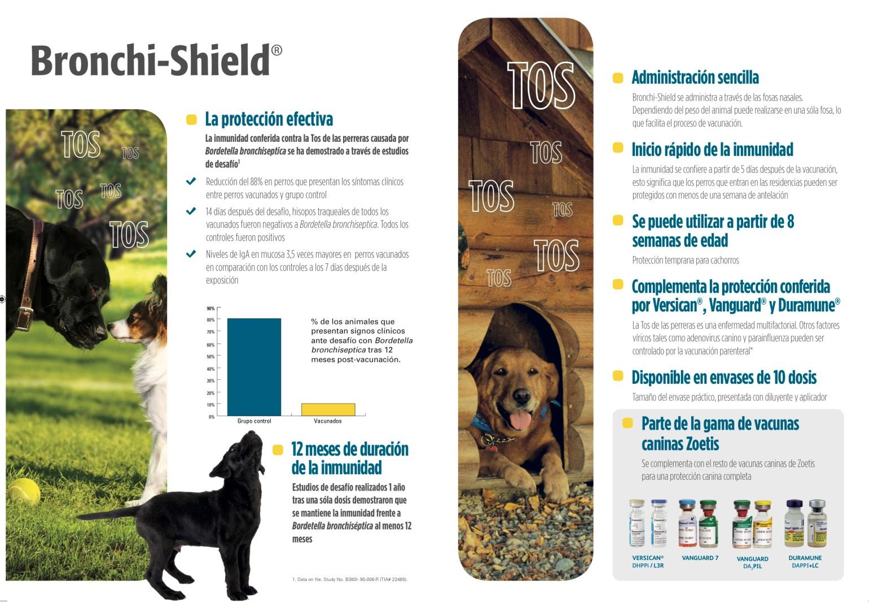 vacuna-bronchi-shield