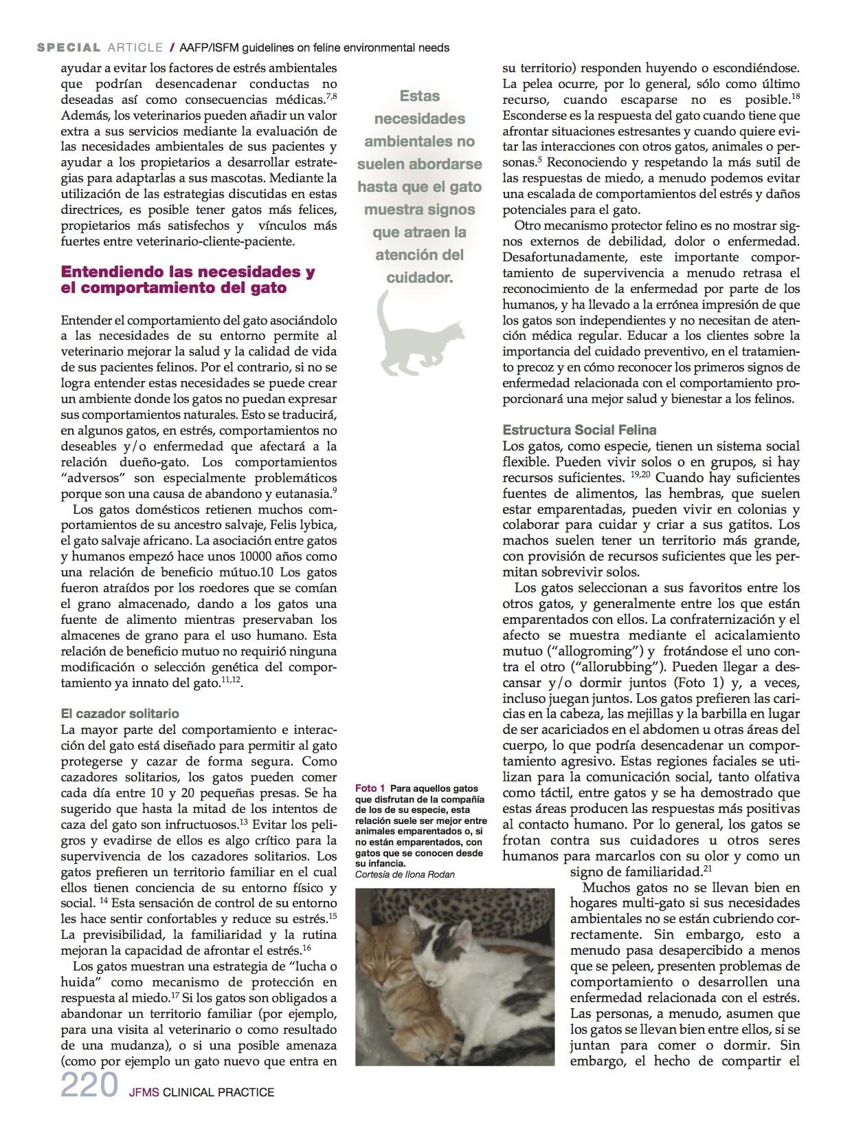 necesidades_medioambientales2_felinas